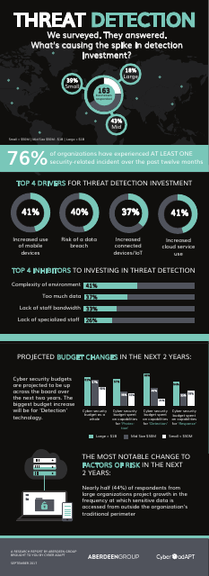 image from Detection Survey Infographic