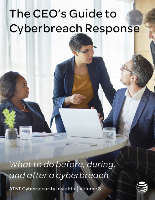 image from Cybersecurity Insights Volume 3: The CEO's Guide To Cyberbreach Response