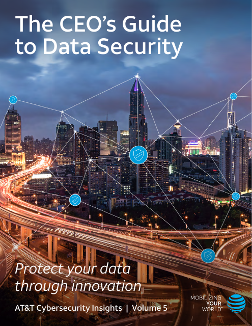 image from Cybersecurity Insights Volume 5: The CEO's Guide To Data Security