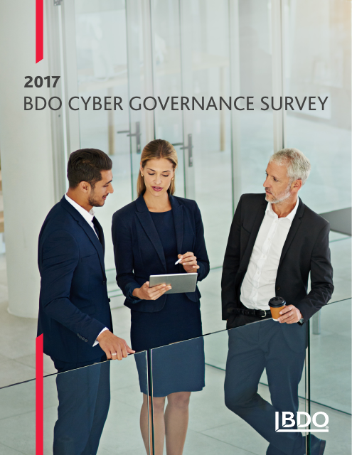 image from BDO 2017 Cyber Governance Survey