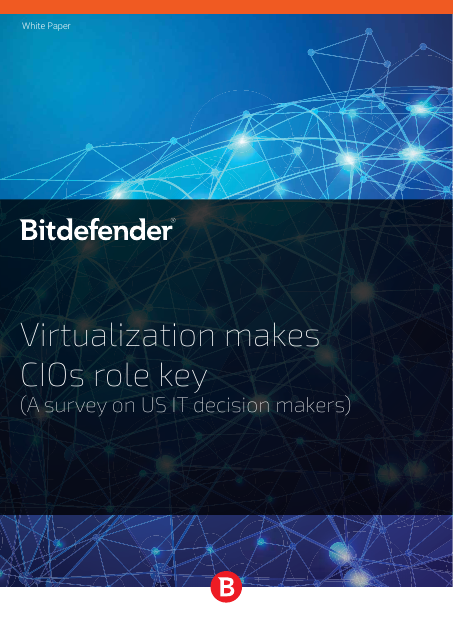 image from Virtualization Makes CIOs Role Key