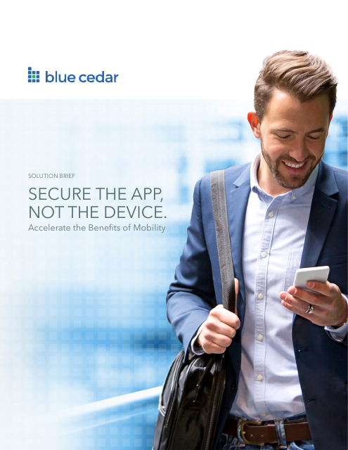 image from Secure The App Not The Device
