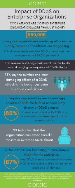 image from Impact Of DDoS On Enterprise Infographic