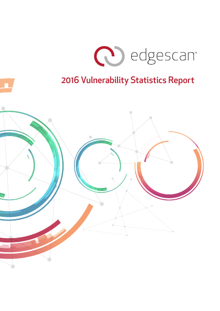 image from 2016 Vulnerability Statistics Report