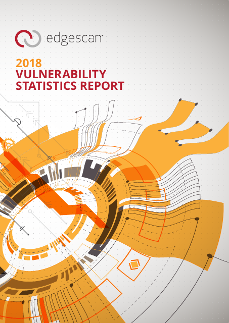 image from 2018 Vulnerability Statistcs Report