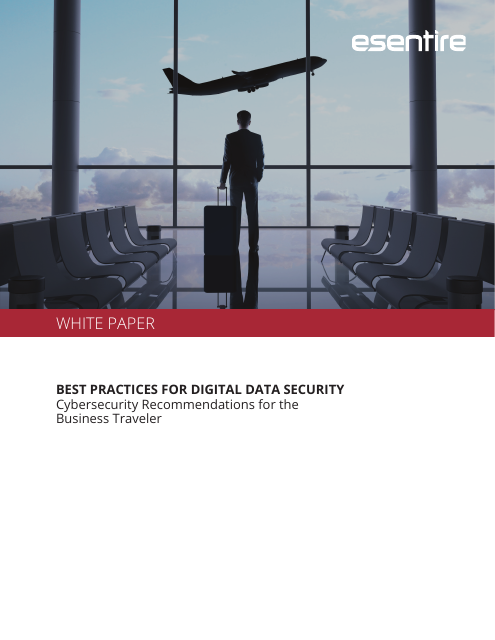 image from Best Practices For Digital Data Security: Cybersecurity Recommendations For The Business Traveler