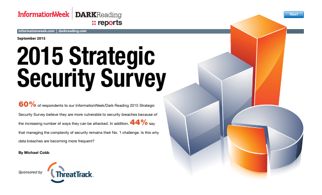 image from 2015 Strategic Security Survey