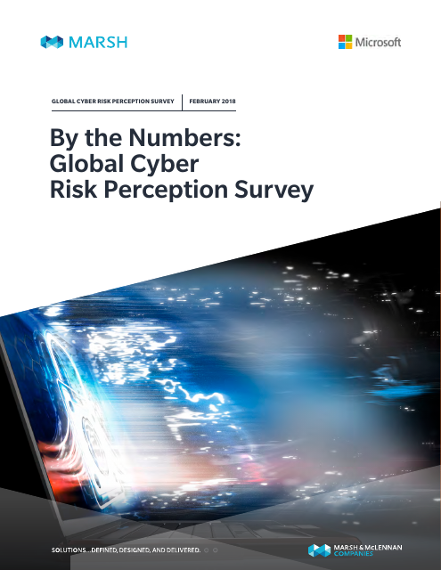 image from By the Numbers: Global Cyber Risk Perception Survey February 2018