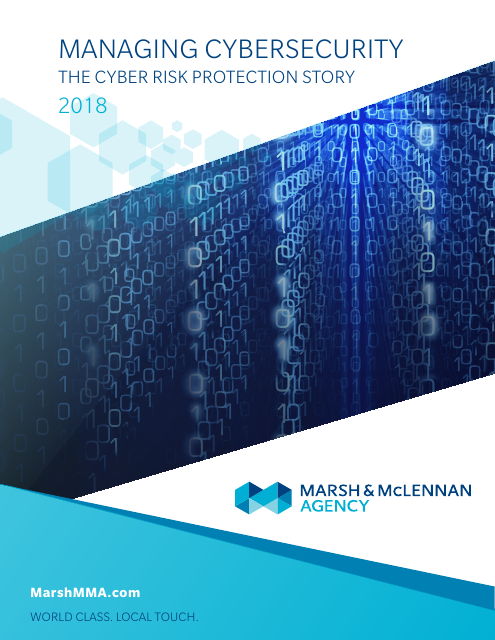 image from Managing Cybersecurity: The Cyber Risk Protection Story 2018