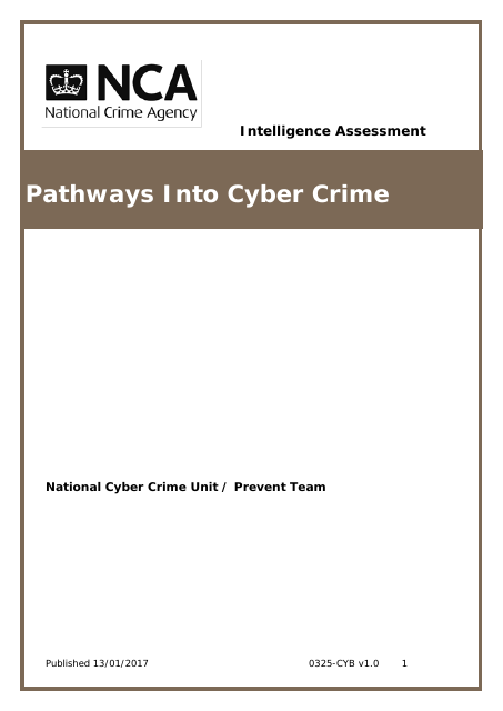 image from Pathways into Cybercrime