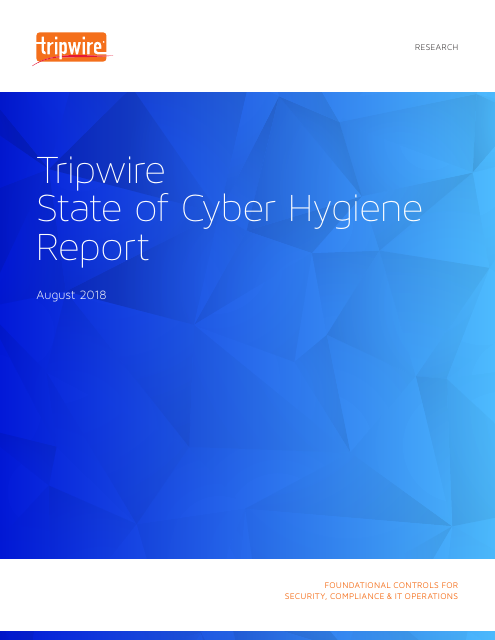 image from Tripwire State Of Cyber Hygiene Report 2018
