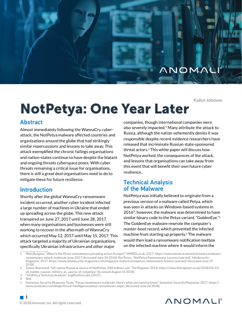 image from NotPetya: One Year Later