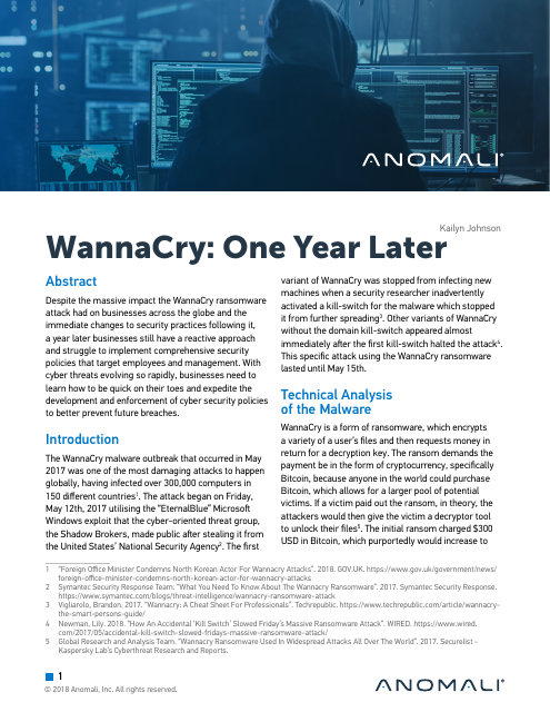 image from WannaCry: One Year Later
