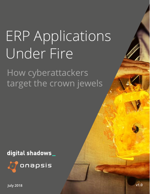 image from ERP Applications Under Fire
