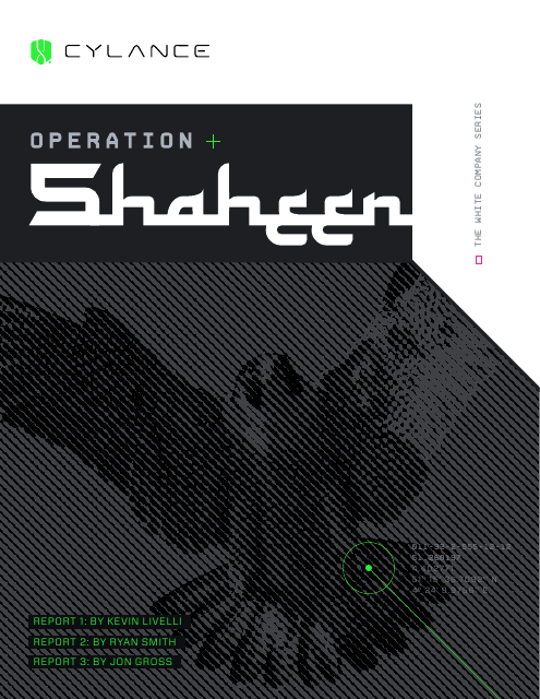 image from Operation Shaheen