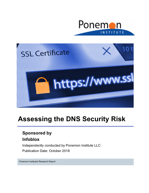 image from Asssessing the DNS Security Risk