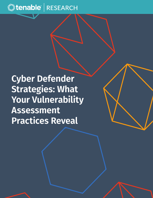 image from Cyber Defender Strategies: What Your Vulnerability Assessment Practices Reveal