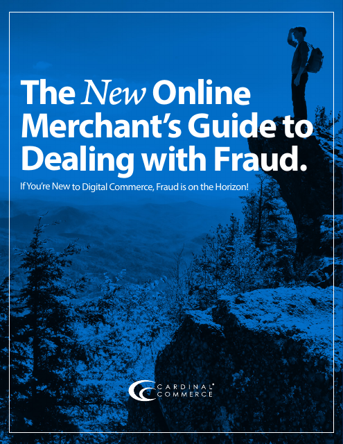 image from The New Online Merchant's Guide To Dealing With Fraud