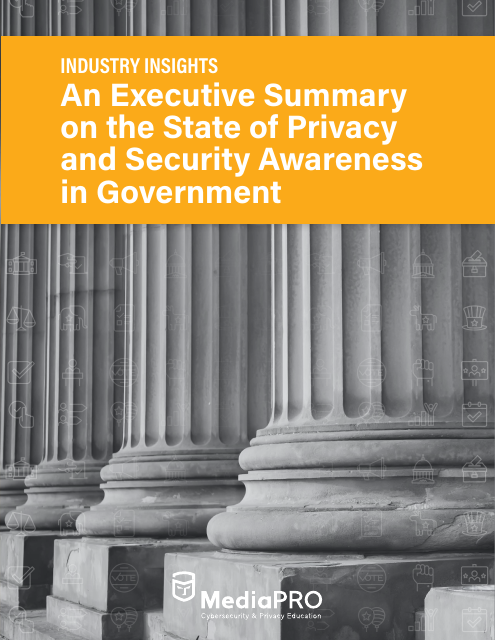 image from An Executive Summary On The State Of Privacy And Security Awareness In Government