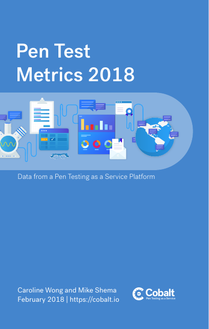image from Pen Test Metrics 2018