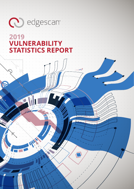 image from 2019 Vulnerability Statistics Report