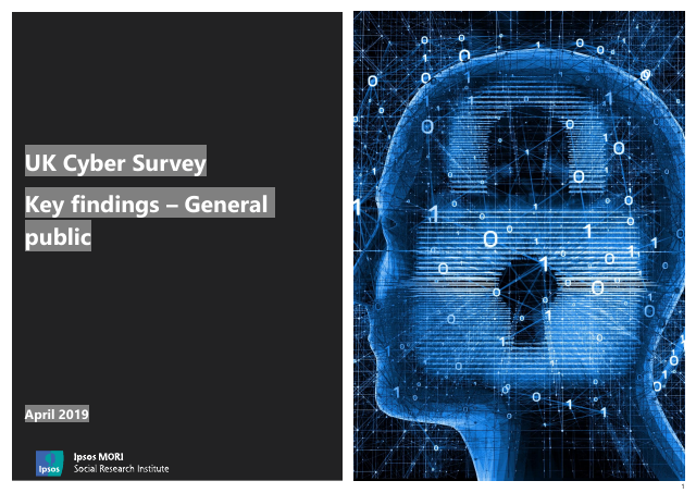 image from UK Cyber Survey Key Findings - General Public