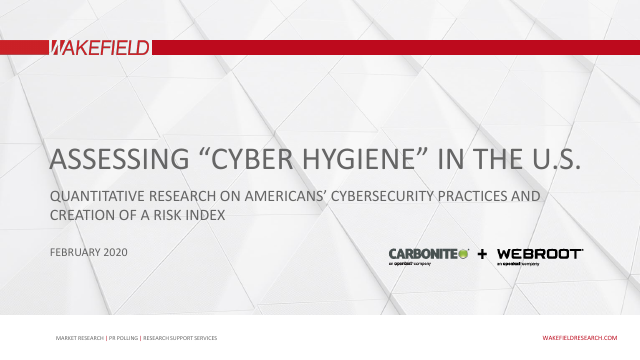 "image from Assessing ""Cyber Hygiene"" in the U.S."