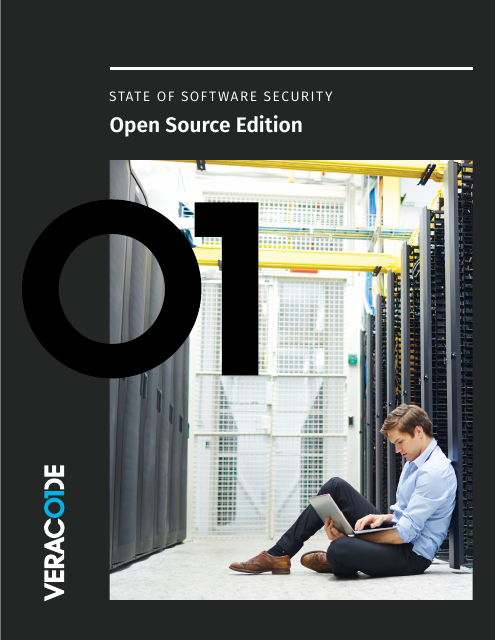 image from State of Software Security: Open Source Edition