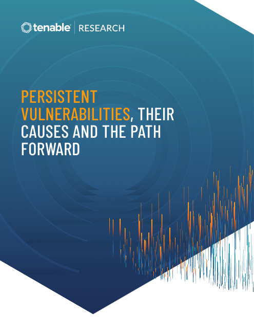 image from Persistent Vulnerabilities, Their Causes and the Path Forward