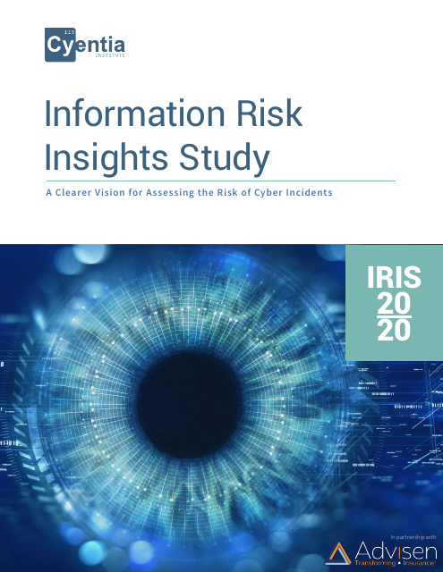 image from Information Risk Insights Study (IRIS) 20/20