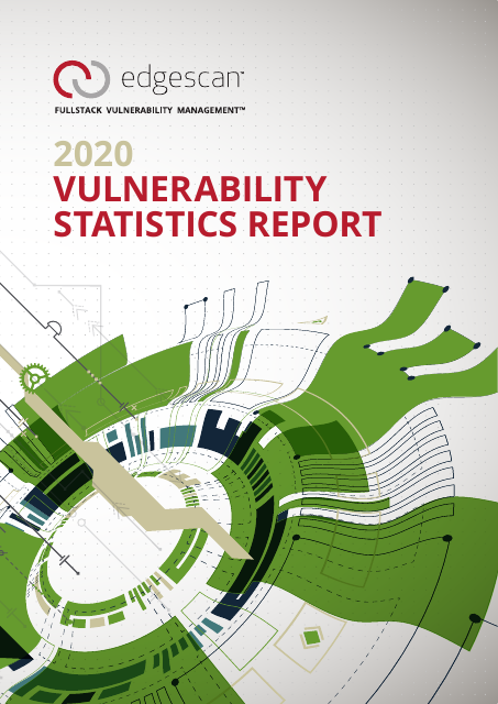 image from 2020 Vulnerability Statistics Report