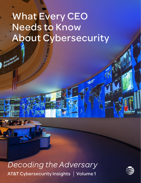 image from Cybersecurity Insights Report Volume 1: What Every CEO Needs to Know About Cybersecurity