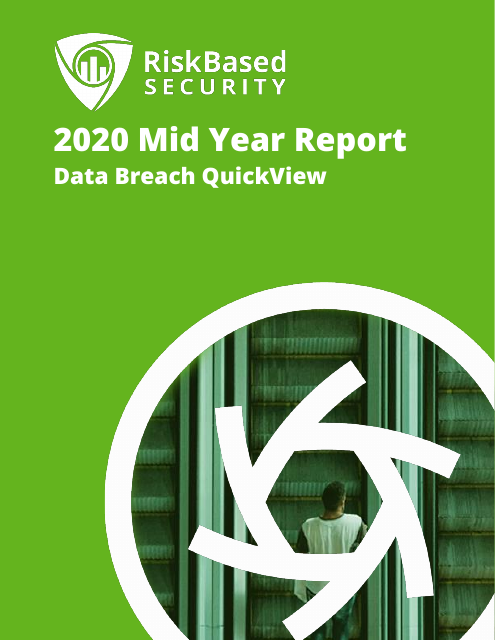 image from 2020 Mid Year Report